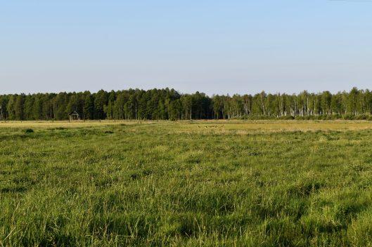 Podlasie, Poland.