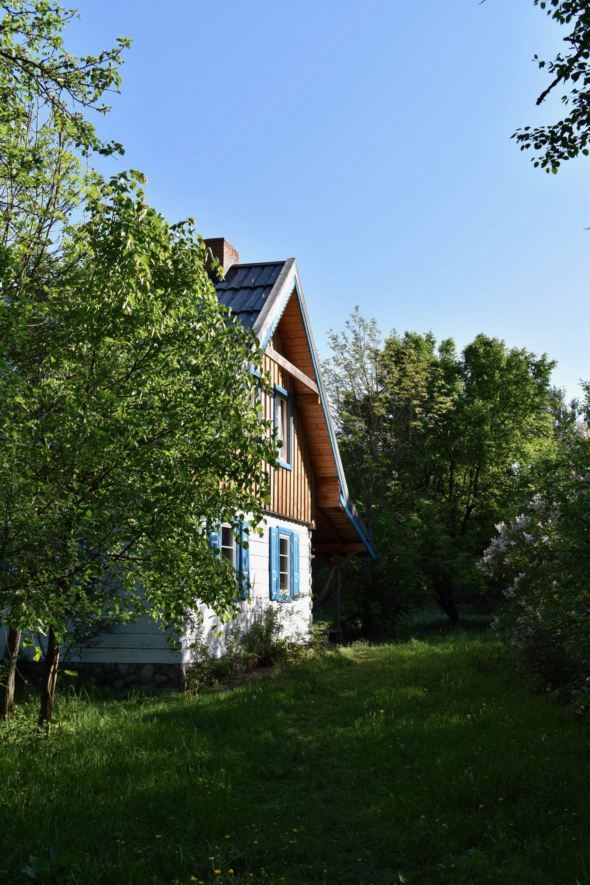 White and blue wooden country house surrounded by trees