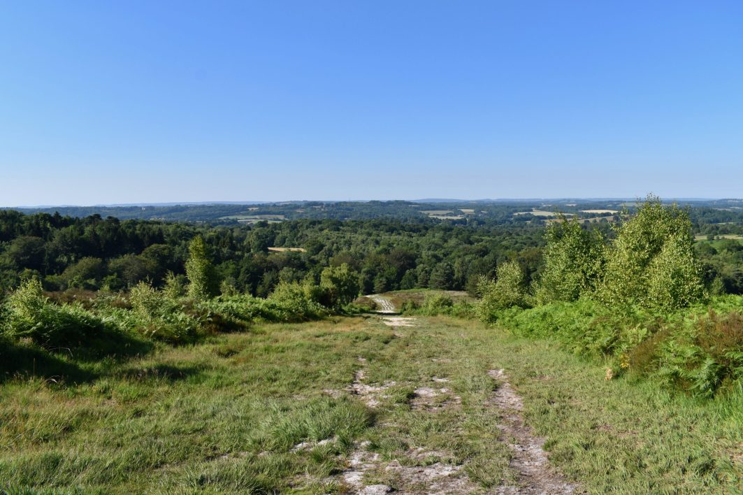 Ashdown Forest. Sussex, England.