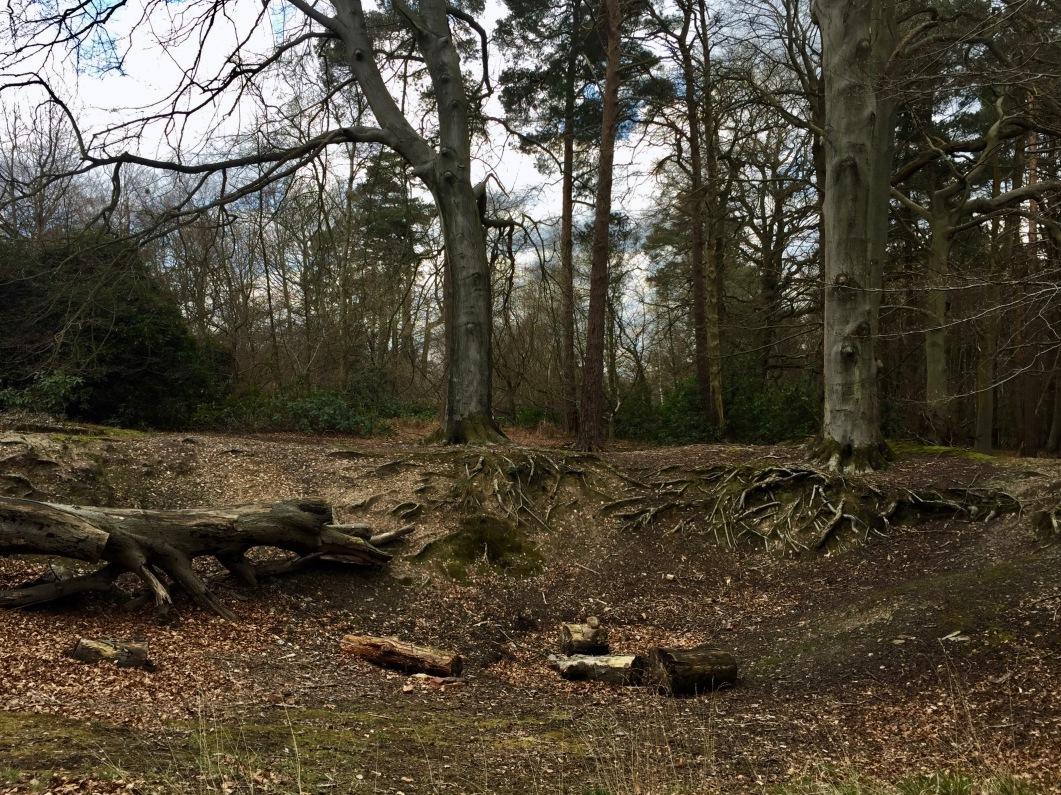 Tilgate Park. Crawley, England.