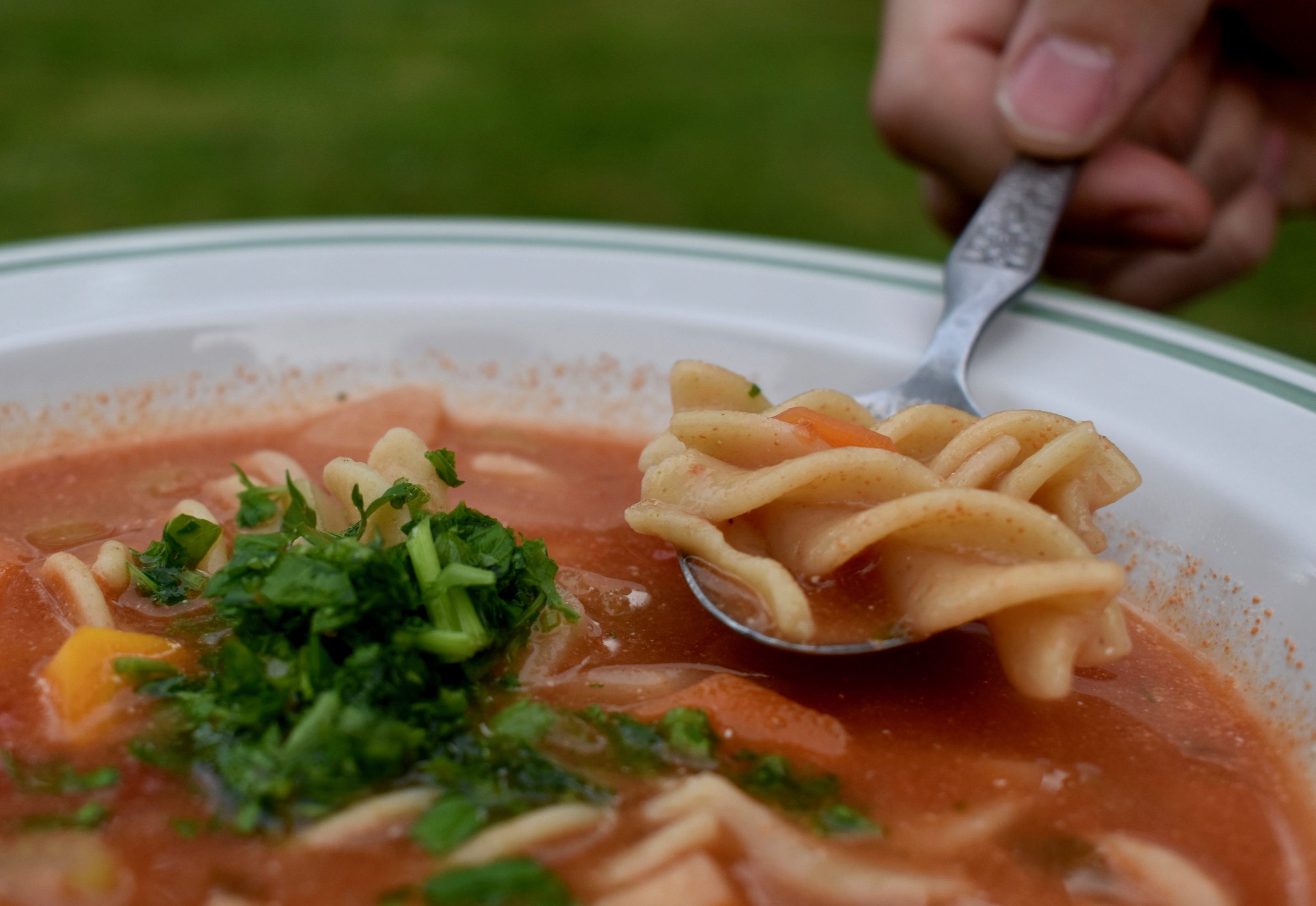 Tomato and Pasta Soup