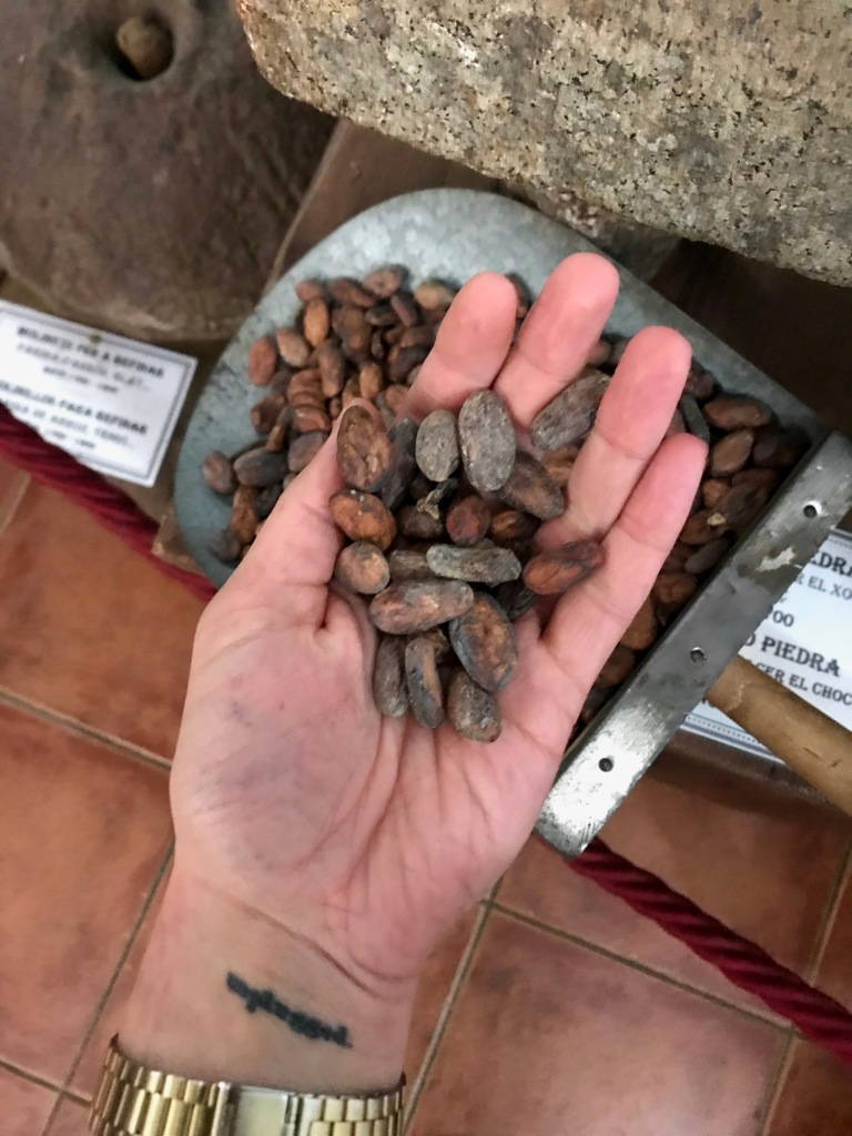 Cocoa beans on hand