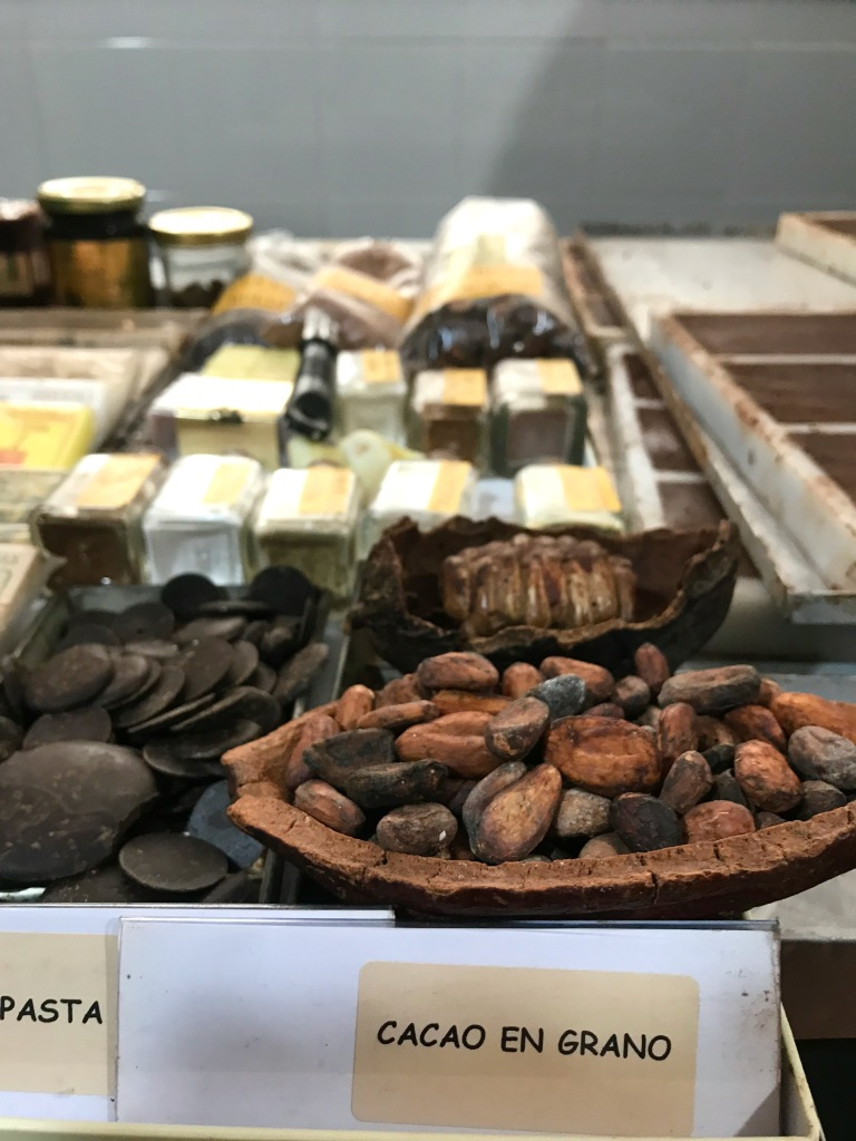Cocoa beans and chocolate in chocolate factory