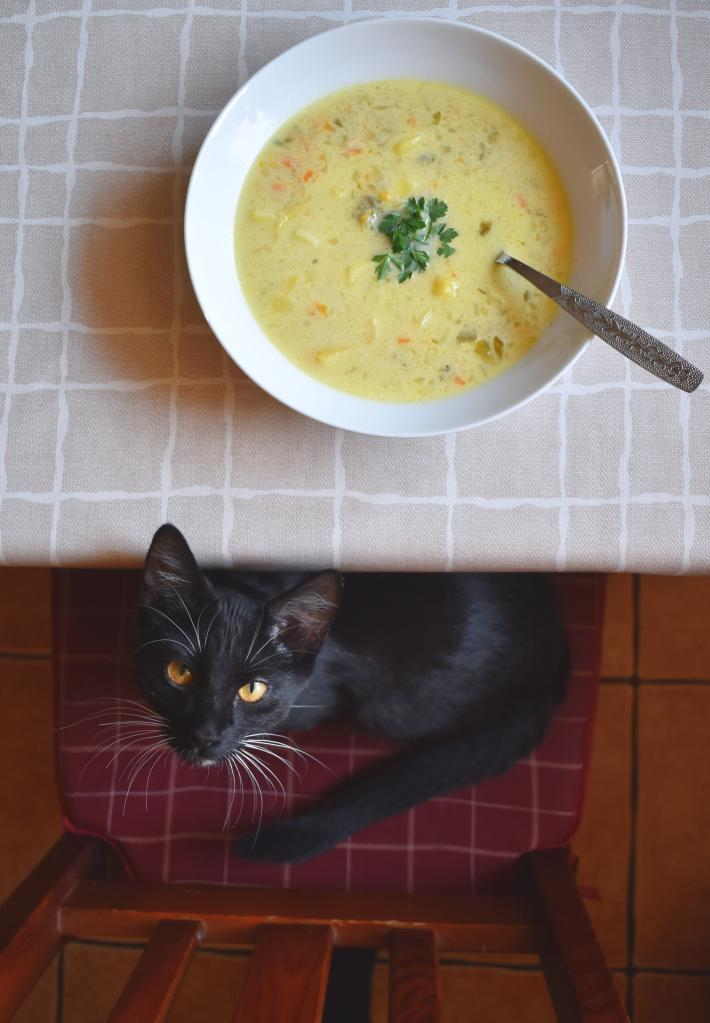 A plate of soup on a kitchen table and a black cat on a chair